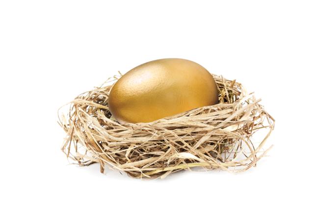 Gold_egg_in_nest_iStock_000013153040